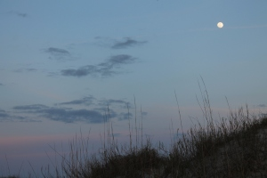 Awesome moon w dunes