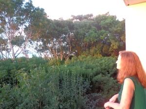 balcony w red hair
