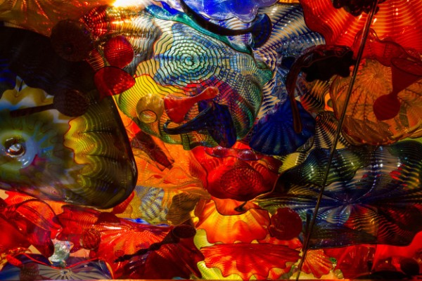 d chihuly ~d nelson