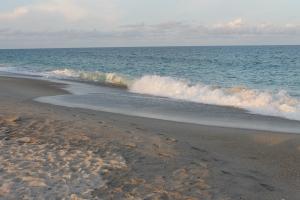 footprints on beach horizontal