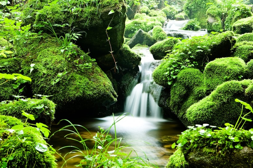 Mossy waterfall from pixabay