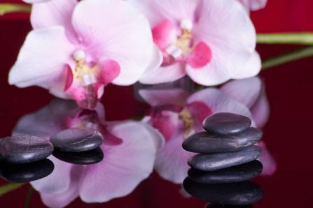 massage stones and flower pixabay