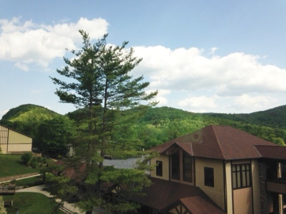 one view from room (2)