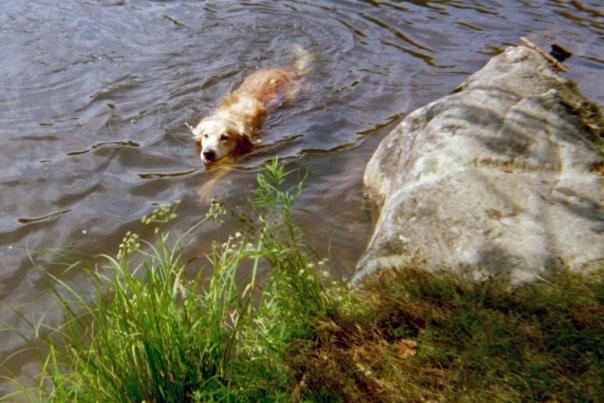 Jesse swimming