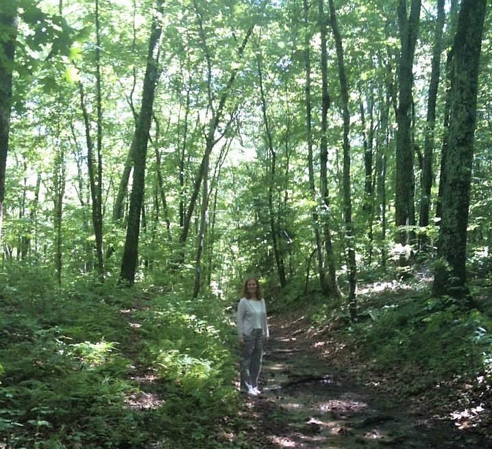 Lantern hill trail (2)