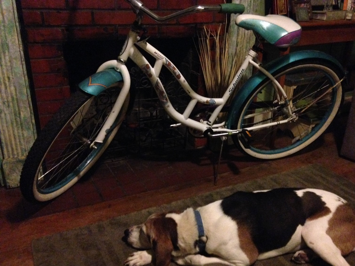 Doodle and bike