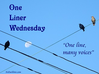 One liner Weds 2017