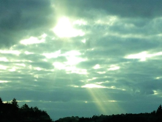 morning drive rays of light (2)