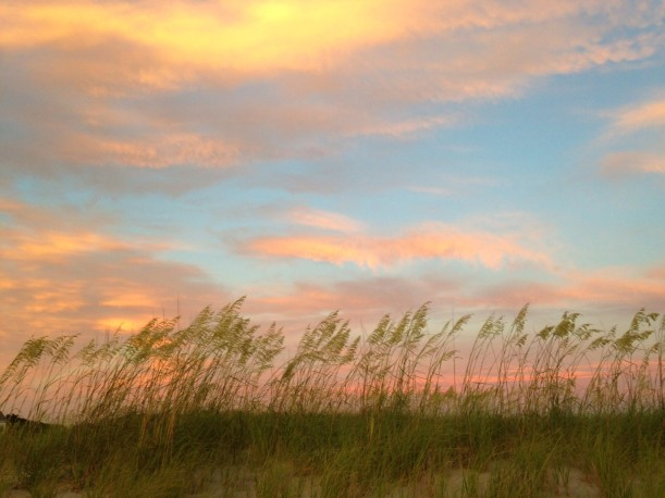 pink clouds and line of sea oats