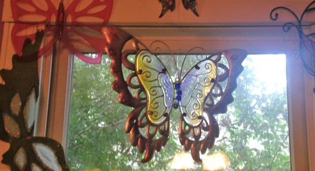 butterflies spare room window