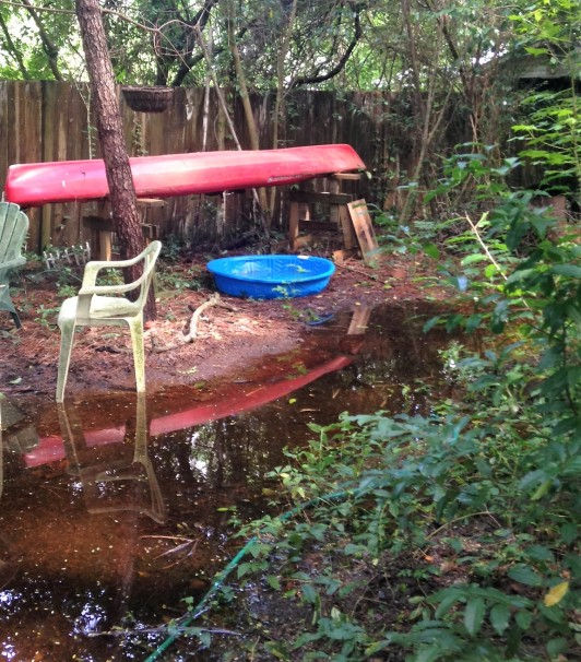kayak refected in the backyard water