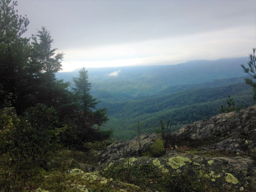 mountains view from blowing rock with lichen