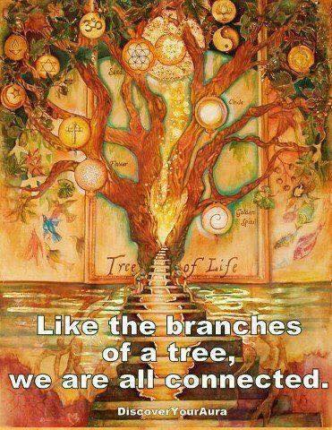 Tree of Life We are all one