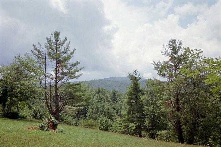 Boone Hillside w trees