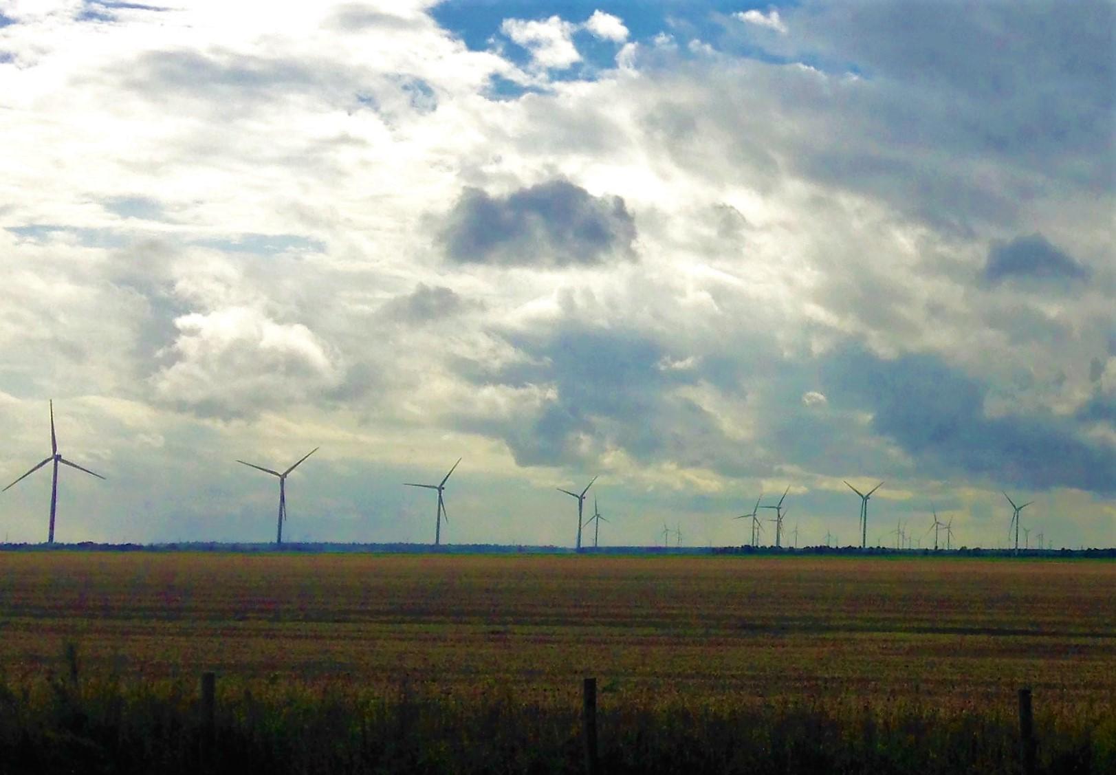windmills vertical .jpg