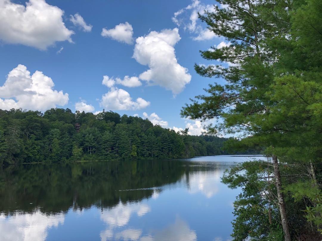 lake trail lake view