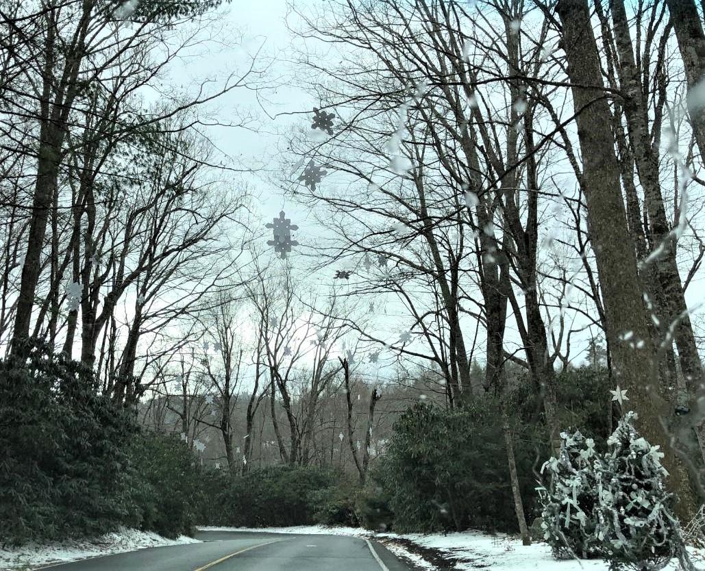 snowflakes at LLH