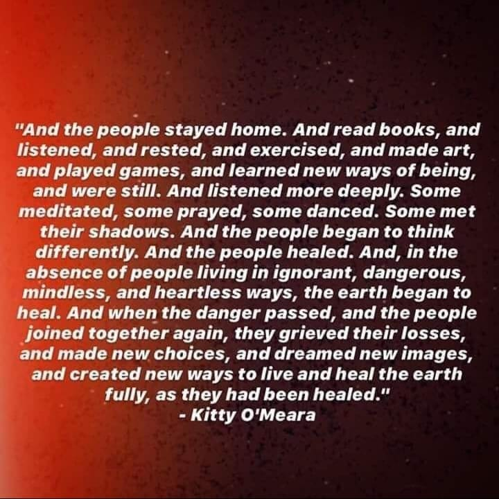 The People Stayed Home and the Earth Healed